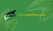 greenpanthera_sondaggi